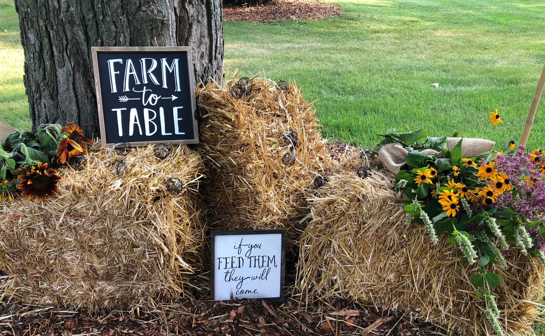 August 10th: Farm to Fork