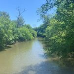 Restore Salt Creek:  Why Dam Removal Is the Best Solution