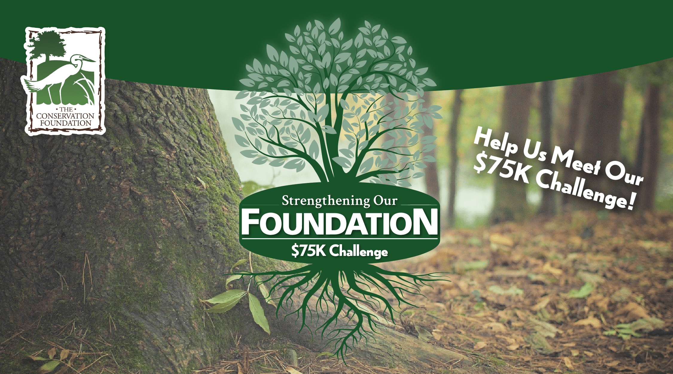 Help Us Rise To The Strengthening Our Foundation $75K Challenge!