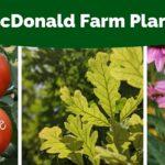 McDonald Farm Annual Plant Sale (Online)