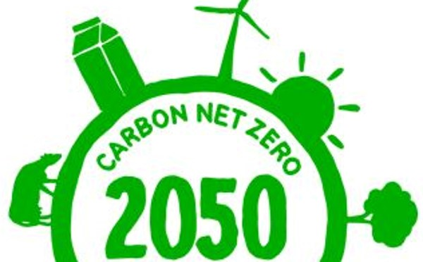 Getting To Net-Zero Carbon: How Conservation Can Help
