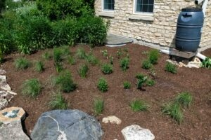 The Conservation Foundation garden picture