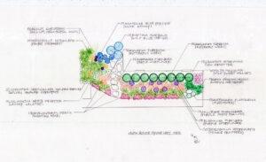 front left garden plan drawing