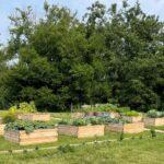 Partnership Feeds Human & Natural Communities in Joliet