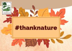 #thanknature banner