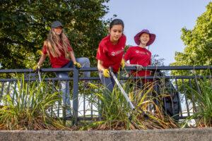 Fox River volunteers picture